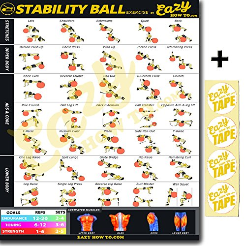 Eazy How To Stability Ball Exercise Workout Banner Poster BIG 28 X 20'' Train Endurance, Tone, Build Strength & Muscle Home Gym Chart by Eazy How To