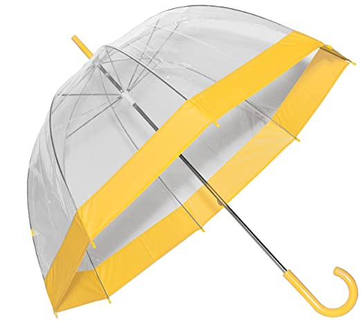 Clear Bubble Umbrella with Colored Trim