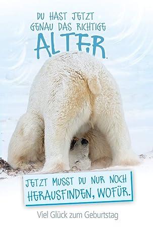 Geburtstagswünsche Karte Geburtstag.Geburtstagskarte Mit Eisbär Geburtstagskarte Lustig