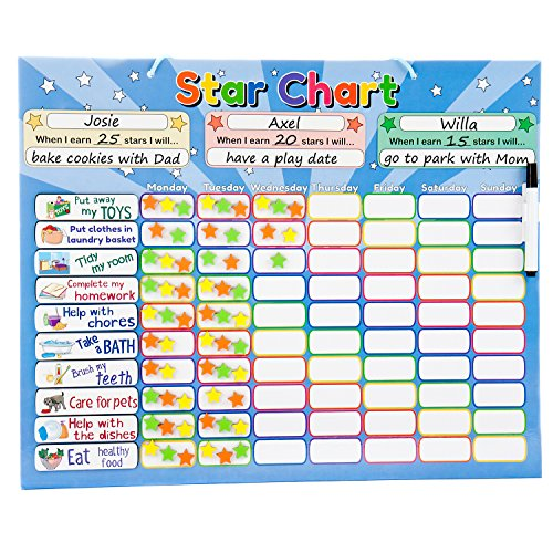 Roscoe Learning Responsibility Star Chart | Customize for 1-3 Kids | Magnetic...