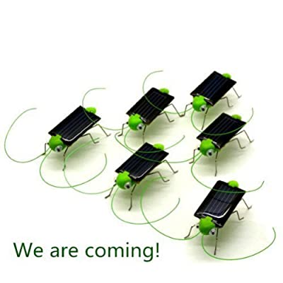World Pride Solar Powered Grasshopper 5 pack: Toys & Games