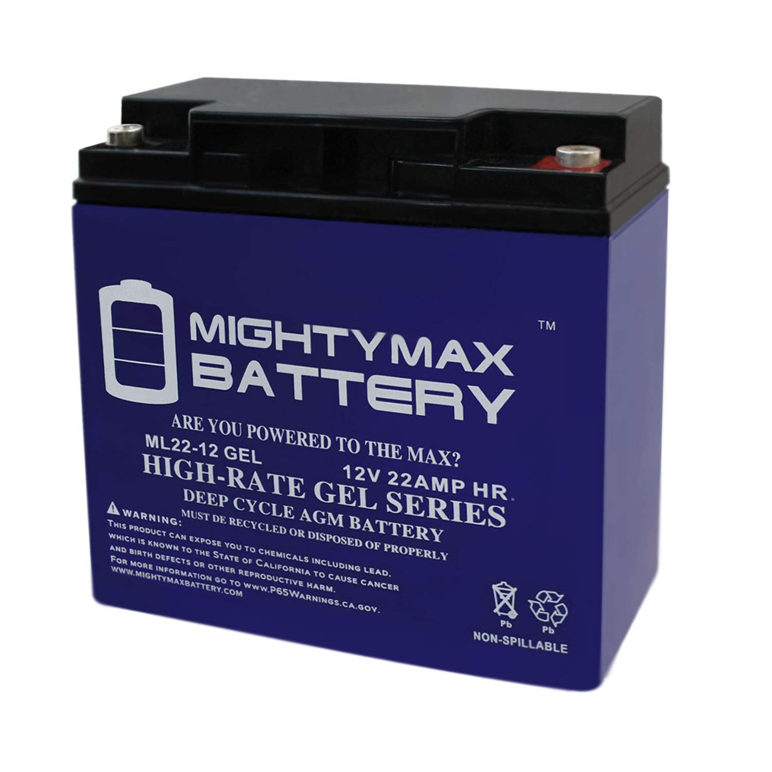 Mighty Max Battery 12V 22AH Gel Battery for Schumacher DSR ProSeries PSJ-2212 Booster Brand Product by Mighty Max Battery