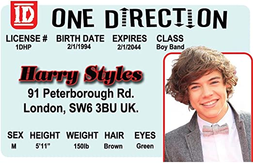 Signs 4 Fun NROID1D2 Harry Styless Drivers License