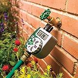 Orbit 62061N Single-Dial Water Timer