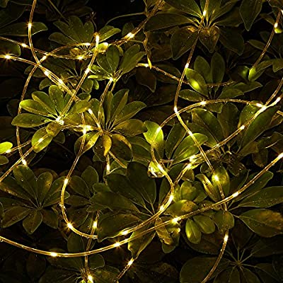 LXS Rope Lights Battery Powered Waterproof 33ft 100 LED with Remote Timer, 8 Modes Dimmable Fairy Lights for Outdoor Indoor Home Garden Patio Party Wedding Christmas Decoration