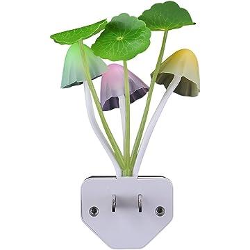 powerful Rienar Mushroom Dream