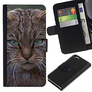 EJOY---La carpeta del tirón la caja de cuero de alta calidad de la PU Caso protector / Apple Iphone 6 / --Gato enojado Maine Coon Pissed