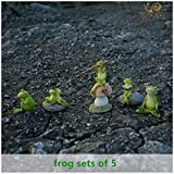 Wall of Dragon Animal Frog Fairy Garden Figurines Micro Landscape Home Decoration Accessories Birthday Gift Souvenirs