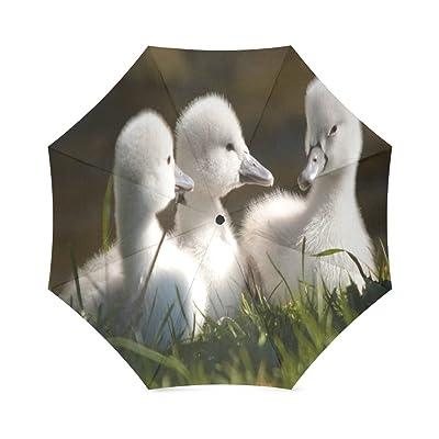 Custom Little Baby Swans Compact Travel Windproof Rainproof Foldable Umbrella