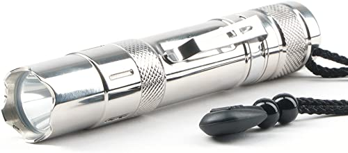 Guard Dog Security Chrome Spectra 300 lm Flashlight, Silver