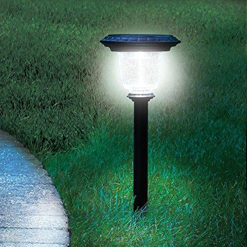 Solar Pathway Light