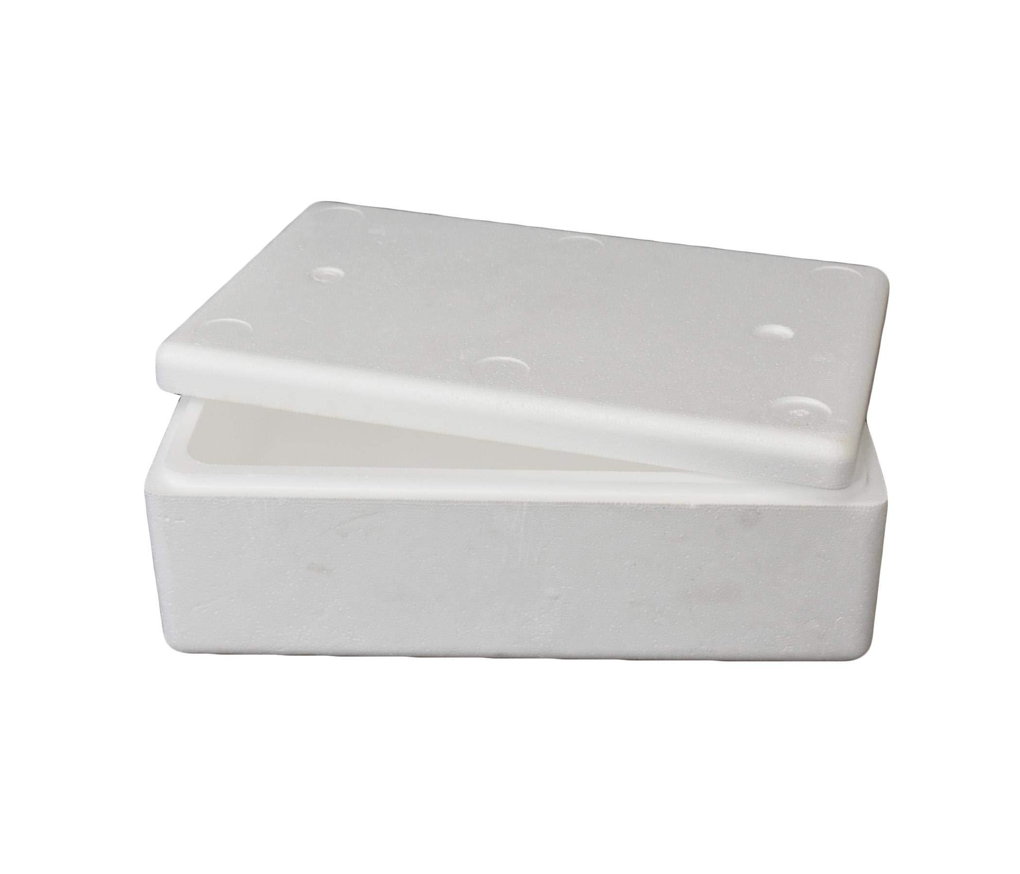 Styrofoam Box 5 KG Capacity Price in UAE | Amazon ae | other