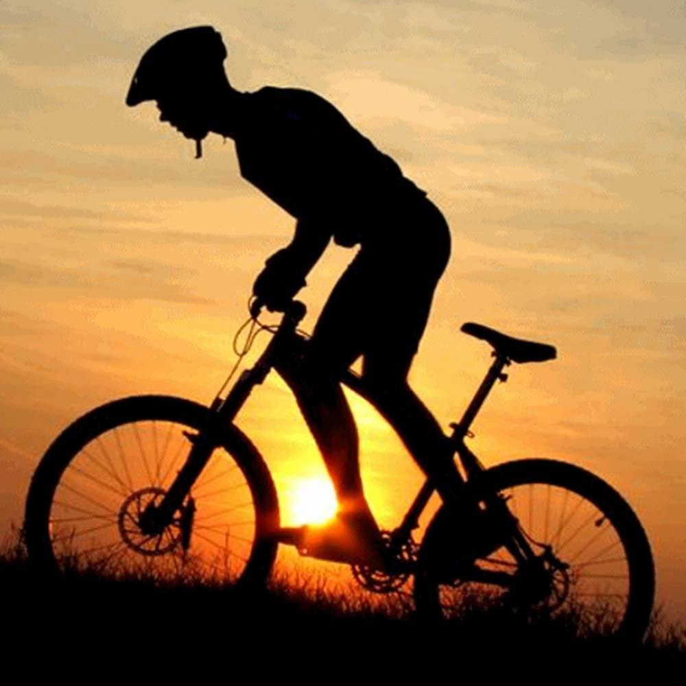 Langstrecken Berg Radfahren Racing Reisen entspannen und ausruhen, 31.8mm 700mm Aluminiumlegierung Riser Lenker f/ür MTB Rennr/äder Dauerhaft Fahrrad Lenker Farbe : Blau , Gr/ö/ße : 31.8mm 700mm