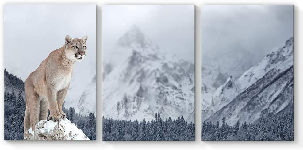 """SIGNFORD Canvas Wall Art Snow Leopard Mountain Canvas Painting Wall Poster Decor for Living Room Framed Home Decorations - 24""""x36"""" x 3 Panels"""