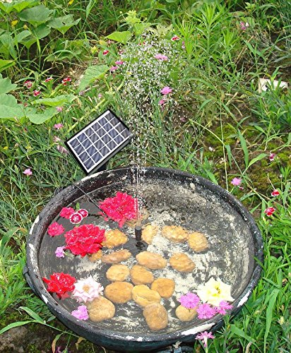 Lewisia 1 5w outdoor solar fountain pump waterfall for Solar fish for pools