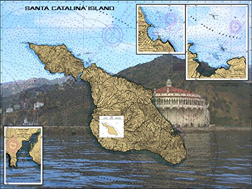 Avalon at Santa Catalina Nautical Chart Unframed Vinyl Art Print - Perfect for outdoors. All-weather.