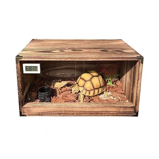 Reptil terrario, lagarto tortuga de la serpiente - Mira la cría ...