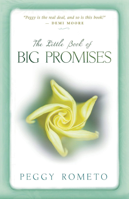 The Little Book of Big Promises: Peggy Rometo: 9781401924539: Amazon.com:  Books