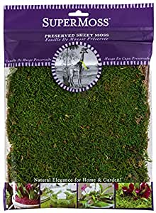 SuperMoss (21509) Sheet Moss Preserved, Fresh Green, 2oz