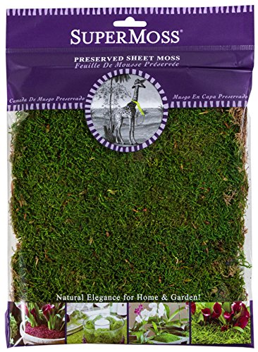 Cheap  SuperMoss (21509) Sheet Moss Preserved, Fresh Green, 2oz