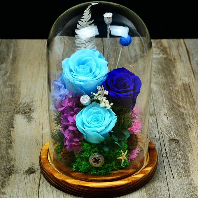 Lxj Regalo de Flor eterna día de San Valentín de la eterna Flor Rosa Cristal Tapa Estuche de decoración DIY Navidad siemprevivas: Amazon.es: Jardín