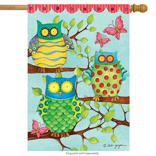 """Owl Trio Spring House Flag Primitive Birds Hoot 28"""" x 40"""" Br"""
