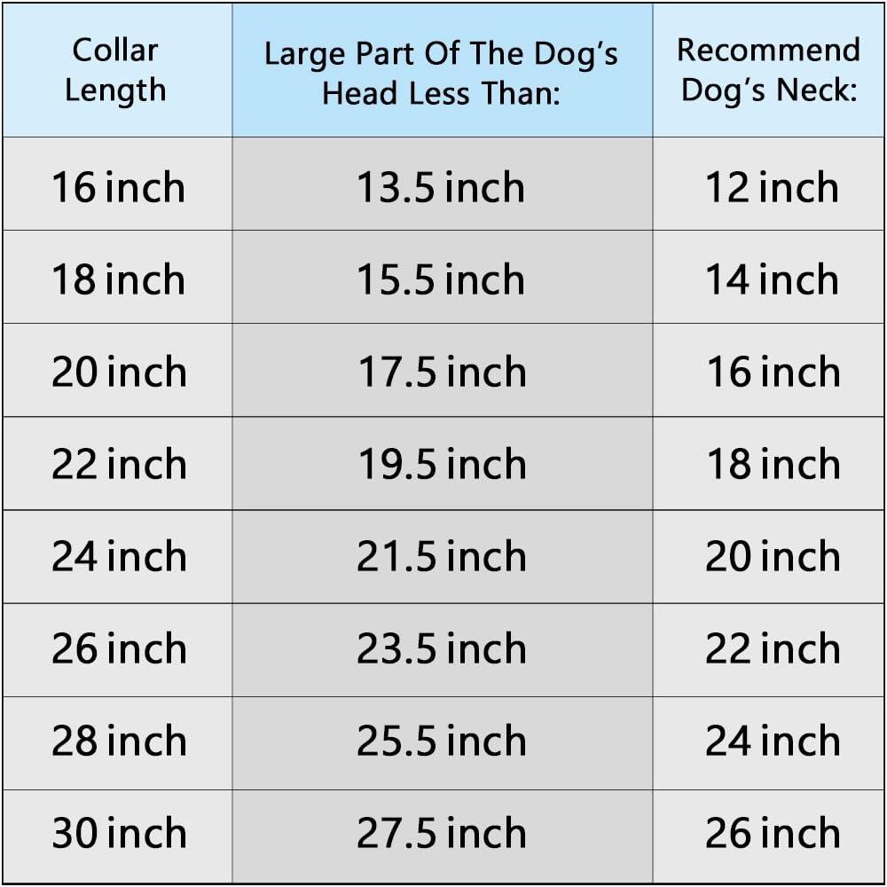 PROSTEEL Collier Cha/îne pour Chien Ras de Cou en Acier Inoxydable pour Animal Domestique 1,9cm de Large 41cm de Long Argent/é