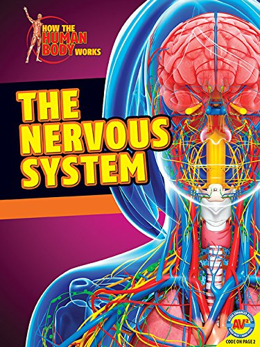 Read Online The Nervous System (How the Human Body Works) pdf epub