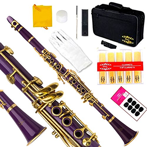 Glory Purple/Gold keys B Bb Flat Clarinet with Second Barrel, 11reeds,8 Pads cushions,case,carekit,Click to see More Colors by GLORY