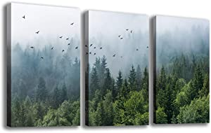 """Green Forest Wall Art Tropical Virgin Forest Mountain Bird Contemporary Canvas Pictures Modern Artwork Framed for Bathroom Bedroom Nursery Living Room Home Office Kitchen Wall Decor 16"""" x 24"""" 3 Pieces"""