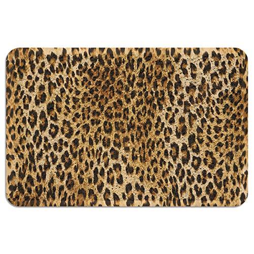 CHARMHOME Entrance Doormat Leopard Print Indoor/Outdoor Doormat Rubber Shoes Scraper Non Slip Heavy Duty Front Entrance Door Mat Rug 24X35 Inch