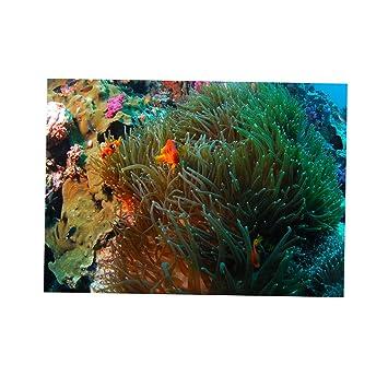 Sharplace Fondo de Acuario Coral 3D Pegatina Fish Tank Decoración ...