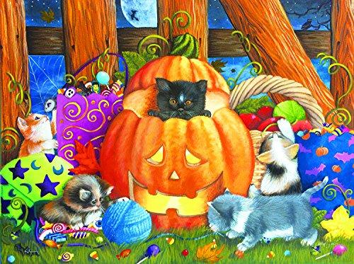 Halloween Surprise 1000 Piece Jigsaw Puzzle by SunsOut