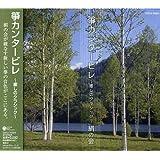 筝カンタービレ~癒しのクラシック