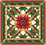Quilt Kit Christmas Star/Queen/Expedited Shipping
