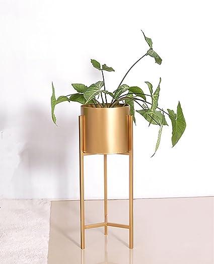 Flower Stand Pergola de Metal Dorado con Soporte para Flores ...