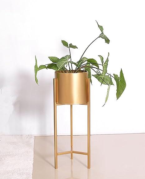 Flower Stand Pergola de Metal Dorado con Soporte para Flores, diseño Redondo de Jardiniere Triángulo, Maceta Creativa, Metal, Altura 90 cm: Amazon.es: Hogar