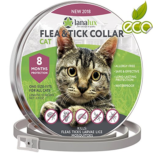 Cat flea Collar Pet Essential Oil Pest Control Collars Flea Tick Prevention Cats 8 Months Flea Control & Cat Flea Treatment Kitten Collar Natural Plant Extracts One Size Fits All by Lanalux