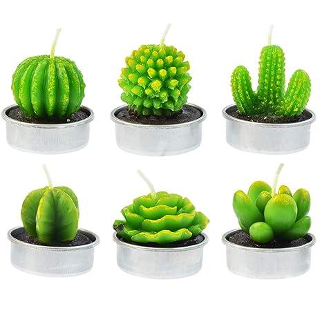 Amazon.com: Mifengda - 6 velas de cactus, velas delicadas ...