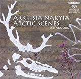 Arctic Scenes by Kurki
