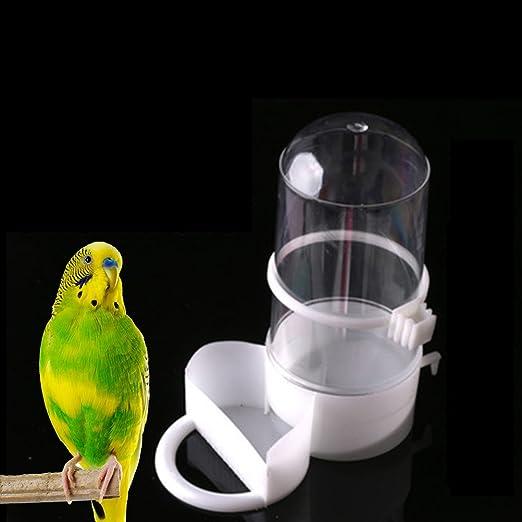 CoscosX 1 PC pájaros mascota automático bebedero alimentador ...