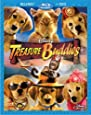 Treasure Buddies (Two-Disc Blu-ray/DVD Combo)