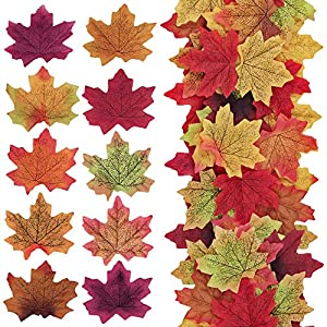 "Supla 500 Pcs 10 Colors Assorted Fake Silk Autumn Maple Leaves Bulk Artificial Fall Leaf Foliage 3.15"" L X 3.15"" W for Thanksgiving Table Door Fall Wedding Party Birthday Baby Shower Decorations 22"