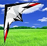 Lightning - Eye-Catching Dual Line Control Sport Stunt Kite, Outdoor Beach Park Garden Fun