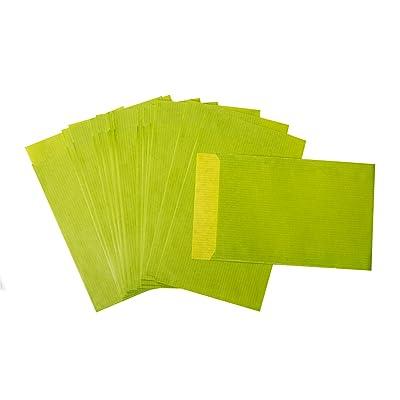 50pcs Petit Sachets Cadeau plats dans maigrün, vert tilleul, vert clair... 9,5x 14cm-DT. Fabrication-pour le calendrier de l'avent bricoler, pour des petits cadeaux, sachets de F