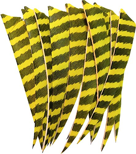 "24pcs Archery 5"" Arrow Turkey Feather Fletching Fletches Yellow Stripe Right Wing Flething Shield"