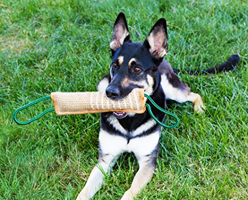 K9to5 Gear Dog Tug Toy Bite Pillow - Strong Dog Pull Toy with Tough Jute, 2 Rope Handles by K9to5 Gear (Image #2)