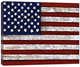 Doodlefish US Flag Artwork Wall Decor, Red/White/Blue