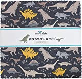 Deena Rutter Fossil Rim 10