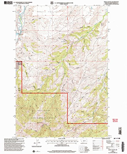YellowMaps Ross Canyon MT topo map, 1:24000 Scale, 7.5 X 7.5 Minute, Historical, 2000, Updated 2005, 26.7 x 22.1 in - Paper ()